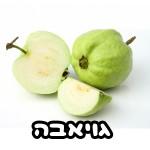 גויאבה