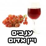 ענבים ויין אדום