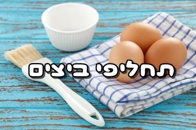 תחליפי ביצים