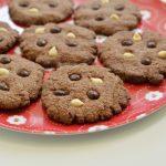 עוגיות שוקולד טבעוניות